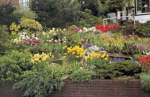 Giardini di costanza groupon for Groupon giardino